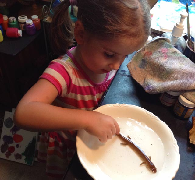 Child with salamander in a bowl.