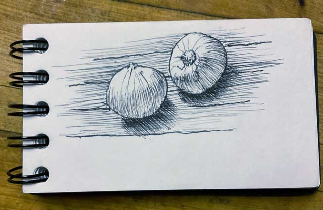 Quick drawing of two onions right before lunch.
